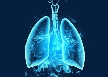 Lung drawing - Stock Image